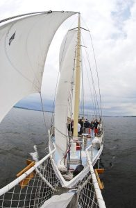 3 Reasons to Take a Day Sail in Cape Cod Aboard the The Liberté