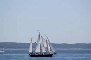 Cape Cod Daysails
